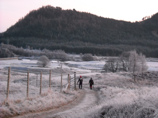 Walking home down the glen