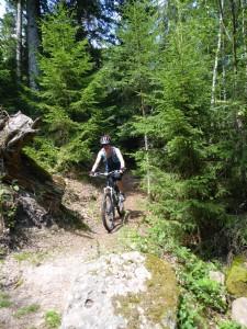 53 Vosges biking